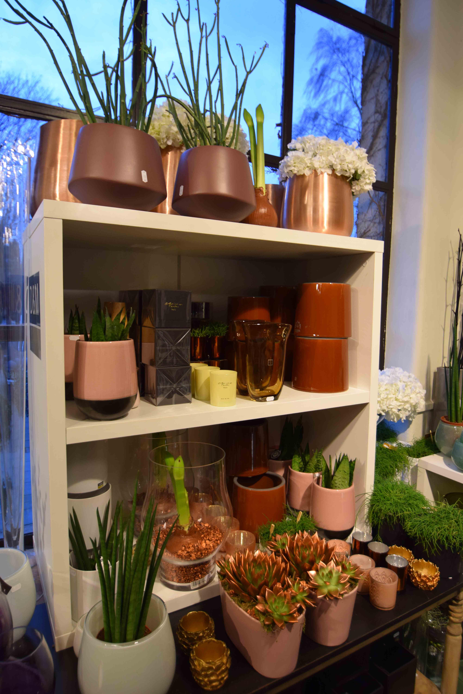 Area Floribus potten & vazen
