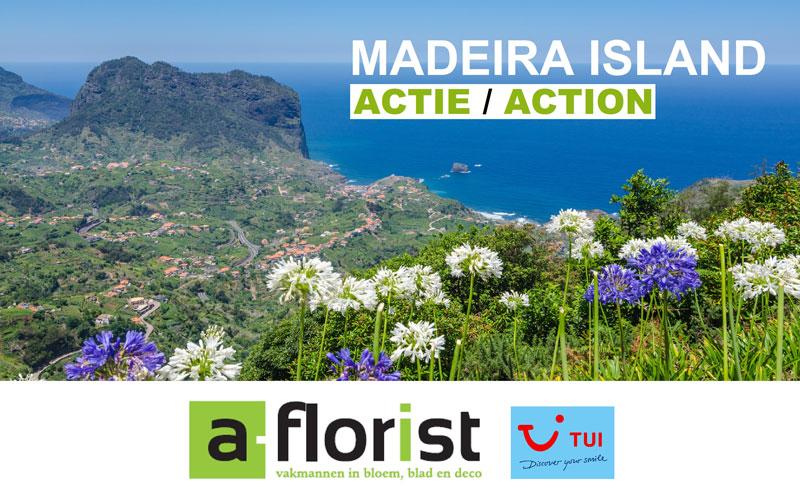 Actie Madeira a-florist